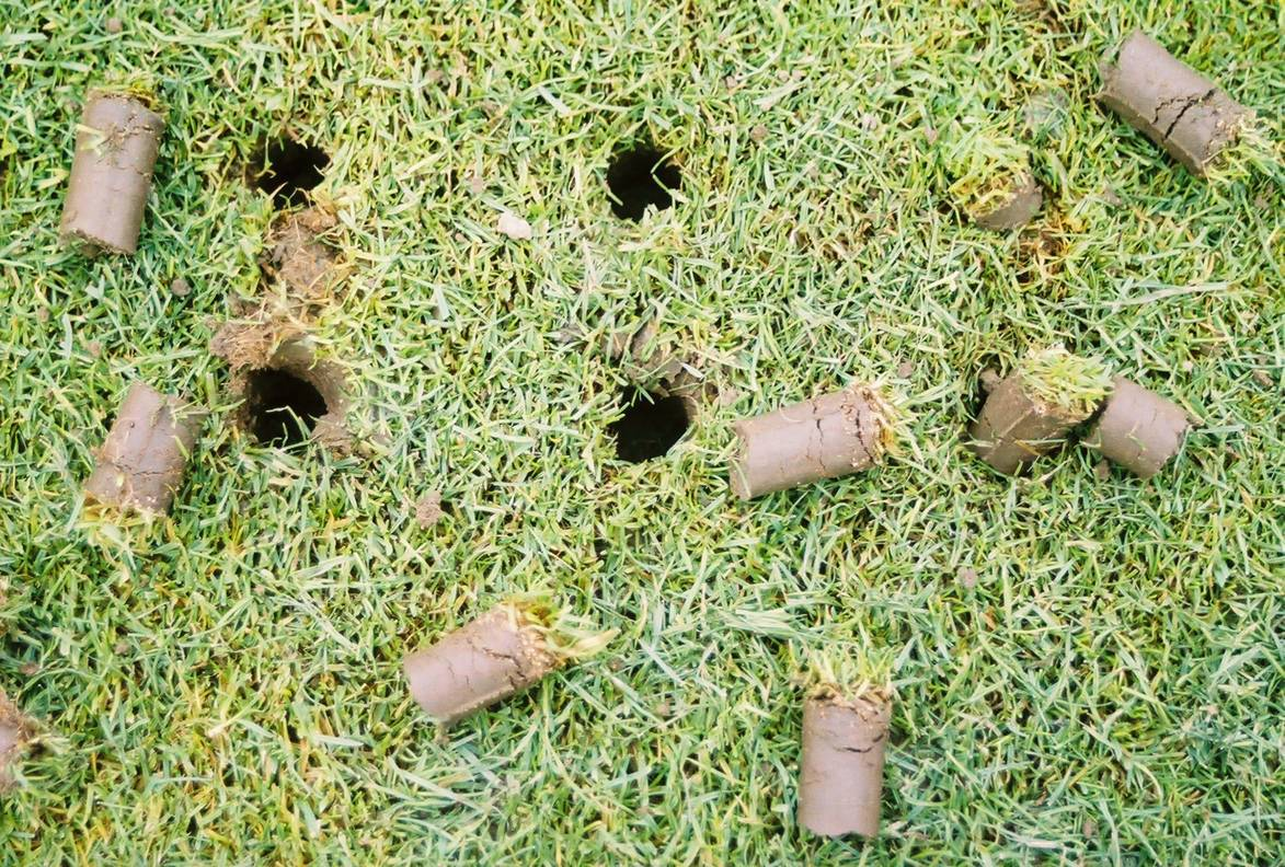 But Do You Know When To Aerate Your Lawn