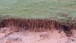 Avoid Soil Erosion