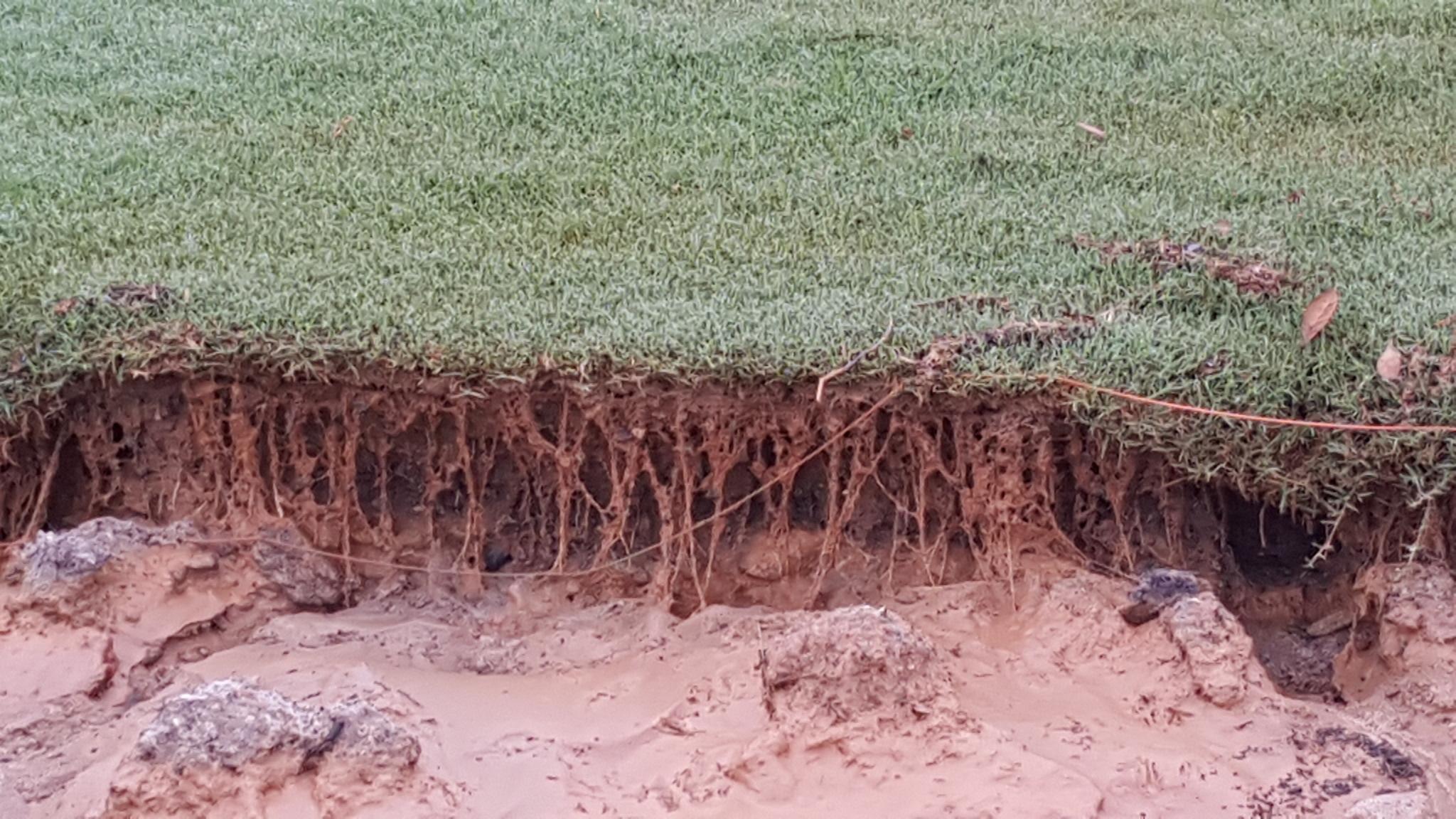 help customers avoid soil erosion and runoff - mirimichi green