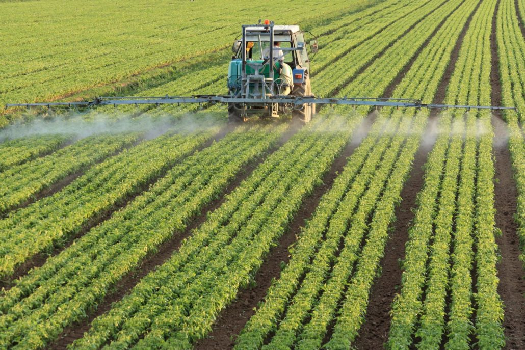 High Nitrogen Poses Risk To Environment