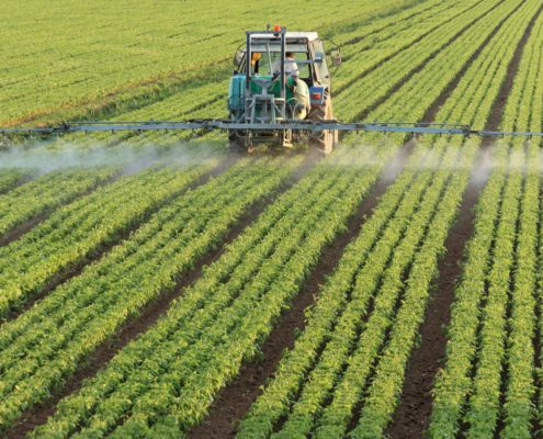 Nitrogen Poses Risk To Environment