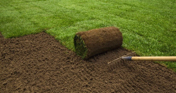 sod application with soil enhancer