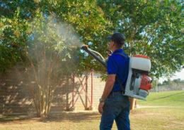 Mirimichi Green Pest Control