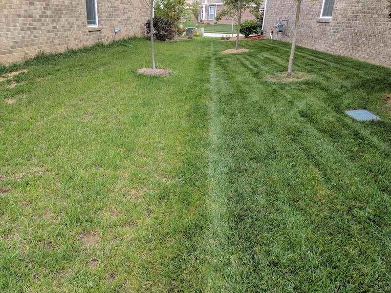ByoSpxtrum Yard vs. Neighbors Yard